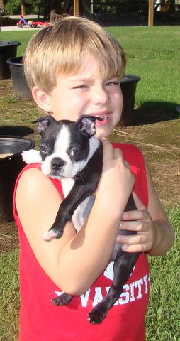 son holding Boston Terrier puppy